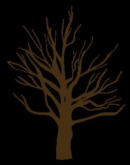 arbol-deco-nature